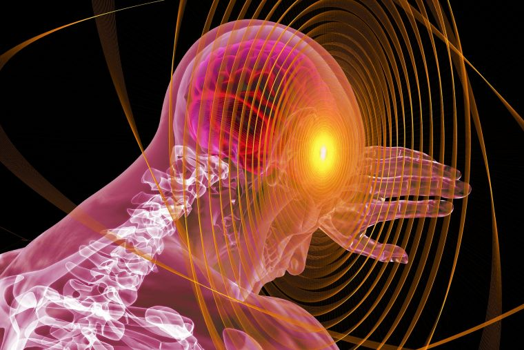 Das Gehirn steuert alles in unserem Körper, auf Grund dessen sollte man besonders darauf achten.